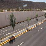 Más de 880 árboles y 14 mil arbustos colocó el Municipio de Querétaro a lo largo del Viaducto Centro Sur