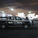 Continúan denuncias ciudadanas para asegurar droga en 5 municipios