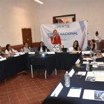 Arahí Domínguez, Coordinadora del Comité Nacional Técnico del DIF de la ANAC