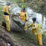 Retiran más de 800 toneladas de basura de los drenes