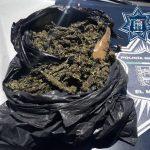 Detenido con marihuana en El Colorado