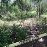 Actualización: Encuentran cuerpo desmembrado en SRJ