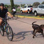 Se celebra la primera Rodada Familiar en Corregidora