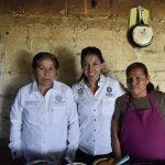 Obras de desarrollo urbano y económico piden personas de Querétaro y Tolimán