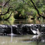 Río El Pueblito paso de la Mariposa Monarca