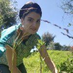 Gana alumna UAQ premio por investigación de uso tradicional de plantas medicinales
