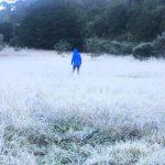 Reportan caida de hielo en San Joaquín