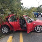 Exceso de velocidad y alcohol. Accidente en Paseo de la República
