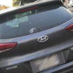 En Cerrito Colorado, 'Nato' y sus cómplices detenidos por robo de vehículo