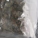 Policías municipales evitan la distribución de droga; dos sujetos son detenidos