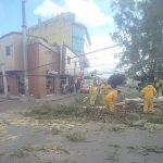 Mantiene Municipio de Querétaro operativo ante las rachas de viento