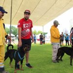 Municipio de Querétaro celebrará Festival Canino este domingo