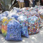 6.6 toneladas de tapitas recolectadas en Corregidora