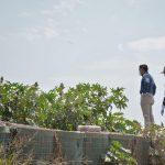 Recorre Sosa obras  en drenes previo a temporada de lluvias
