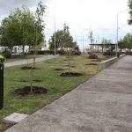 Municipio de Querétaro continúa la rehabilitación de parques y áreas verdes