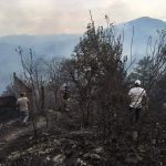 Incendio en bosque de Pinal de Amoles está por detenerse