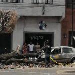 Árbol cae sobre auto en Zaragoza y Pasteur