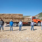 Concluye entrega de forraje para disminuir pérdidas provocadas por el estiaje en El Marqués