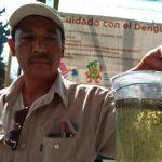 15 casos de Dengue en Querétaro