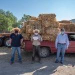 Concluye programa de Apoyo con Forrajes en El Marqués