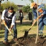 Juntos, hagamos la diferencia por el medio ambiente: Luis Nava