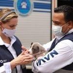 Luis Nava visitó Unidad Municipal de Atención Animal